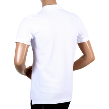 Aquascutum White Hilton Polo Shirt AQUA4838