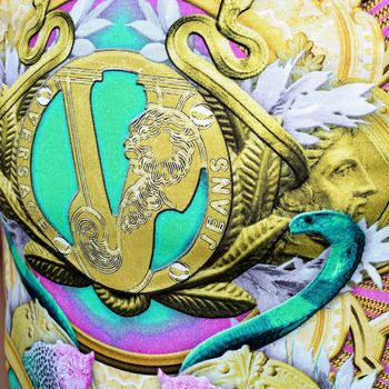 Versace Black Regular Fit Crew Neck Short Sleeve T Shirt for Men with Printed Coloured Tiger and Snake Front VERS6155