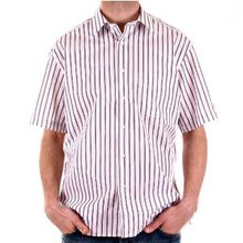 Burberry Short sleeve shirt printed plum & grey stripes