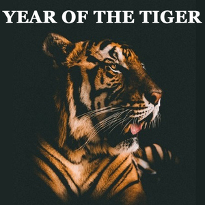 Wear Your Zodiac Sign - Year of the Tiger